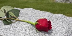 funeral rose